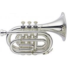 B Taschentrompete, mit einem normalen Trompetenschallstück