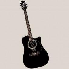 Takamine Westerngitarre  EF341SC