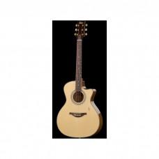 Höfner Westerngitarre HA-GA04