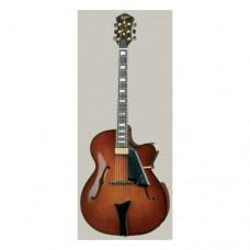 Jazzgitarre Höfner HC V0