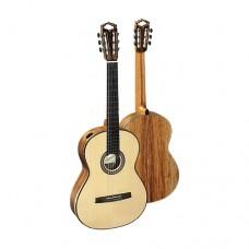 Hanika Grand Konzert Gitarre