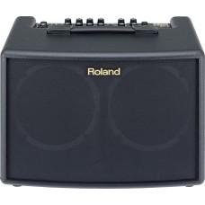 Roland Akustikgitarren-Verstärker AC-60