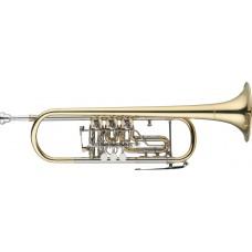 B Trompete mit Drehventilen, im Softcase