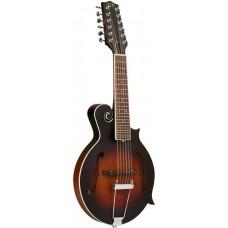 12-Saiter Gitarren-Mandoline mit F-Stil Korpus, Tonabnehmer und Case