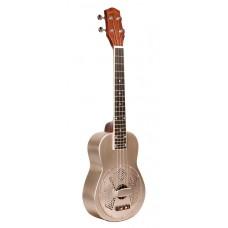 Western Gitarre, Akustik, SUNBURST