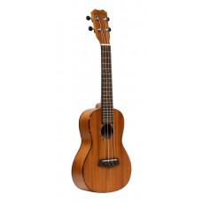 Akustik und E-Gitarre 6X1 AC/EL CHROME