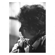 Hohner Mundharmonika Bob Dylan Signature
