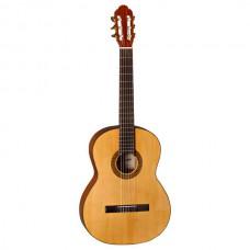 De Felipe Gitarre DF33C inklusive Tasche TG10