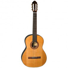De Felipe Gitarre DF44C inklusive Tasche TG10